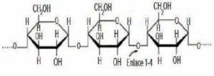 Composición Química de la Panta Huacaparana