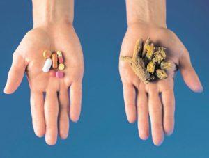 Usos Medicinales del Árbol Ubos