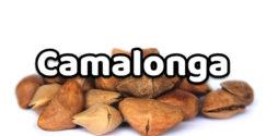 Camalonga