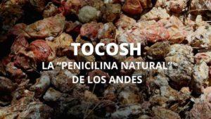 Propiedades tocosh