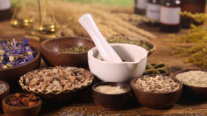 historia de plantas medicinales